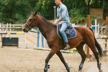 Horse Riding Equipment For Beginners